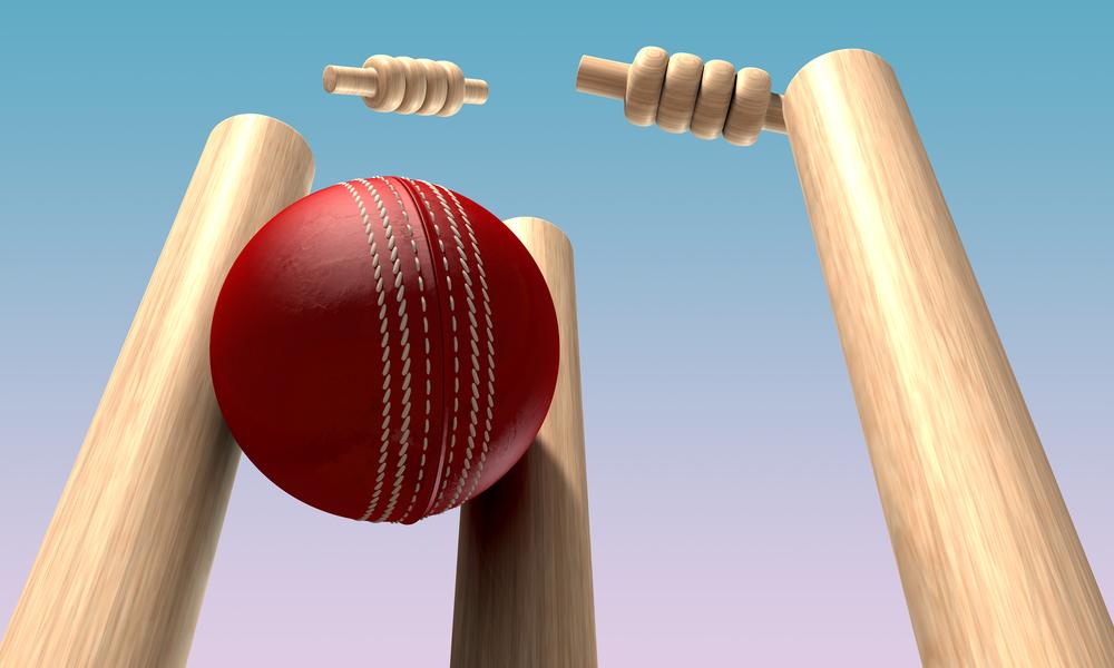 Cricket Ball Hitting Wickets